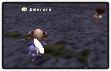 大きな魚を団扇で